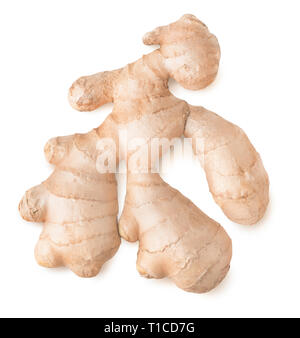 Isolated ginger. One raw ginger root, top view, isolated on white background with clipping path - Stock Image