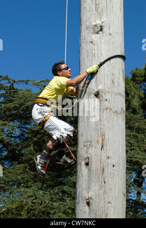 Welsh Open Speed Pole Climbing contestant, Royal Welsh Show 2012, Llanelwedd Builth Wells Wales. - Stock Image