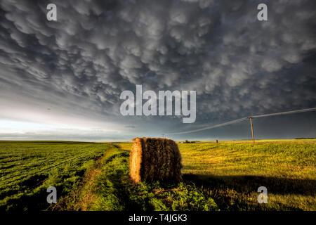 Prairie Storm Clouds in Saskatchewan Canada Scenic - Stock Image