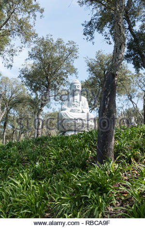 Statue of sitting buddha in the landscaped gardens of Buddha Eden, Bombarrel, Portugal - Stock Image
