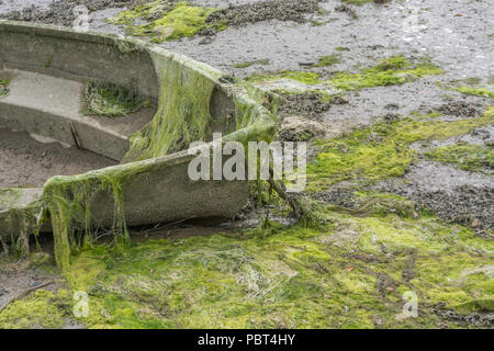 Beached small boat covered with green algae-like seaweed and washed up netting. - Stock Image