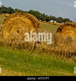 Hay Bales On Field Against Sky - Stock Image