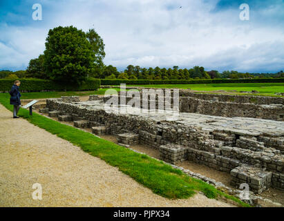 Senior lady reading an information board at a historical site with remains of a Roman Granary  near Hadrian's wall at Corbridge Northumberland UK - Stock Image