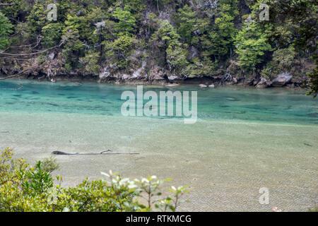 River in the Abel Tasman National Park, New Zealand - Stock Image