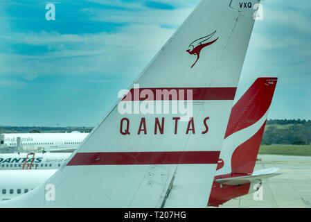 The tail of a Boeing 737 838 (VH-VXQ) painted in Qantas' 1959 livery with the modern and current paint scheme in the background at Sydney Airport - Stock Image
