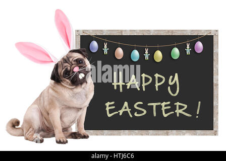 cute pug puppy dog with bunny ears diadem sitting next to chalkboard sign with text happy easter and decoration, - Stock Image