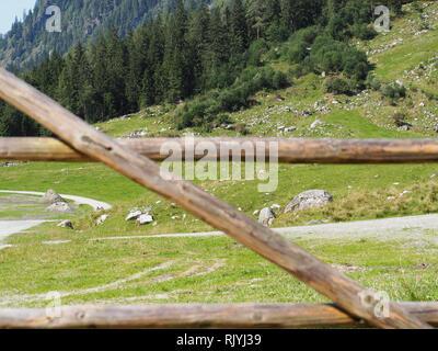 Wood fence on pasture - Stock Image