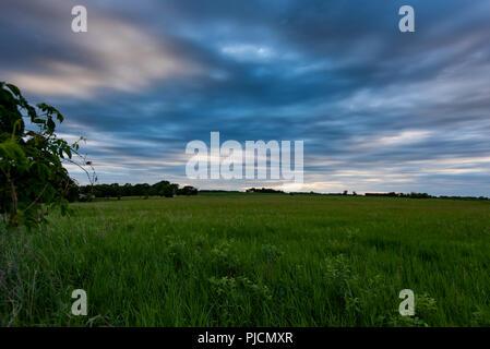 Blue Light Over Grassy Field in Rural Minnesota - Stock Image