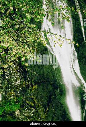 waterfall in the scenic landscape national park of snowdonia national park wales uk eu europe - Stock Image