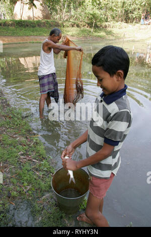 BANGLADESH Father and son of the Garo tribal minority catching fish in the pond on their farm, Haluaghat, Mymensingh region photo by Sean Sprague - Stock Image