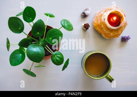 Pilea Plant, Coffee Mug, and Himalayan Salt Candle Holder with Crystals on Grey Table - Stock Image