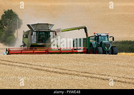 Combine Harvester cutting a field of wheat on farmland in the countryside of North Yorkshire, England. - Stock Image