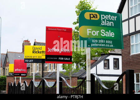 Various estate agents signs for sale outside apartment building in Cardiff Wales UK  KATHY DEWITT - Stock Image