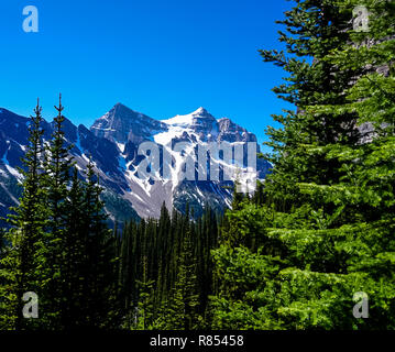 The Mountains along the Tea House Trail in the Rocky Mountains in Banff National Park in Alberta Canada - Stock Image
