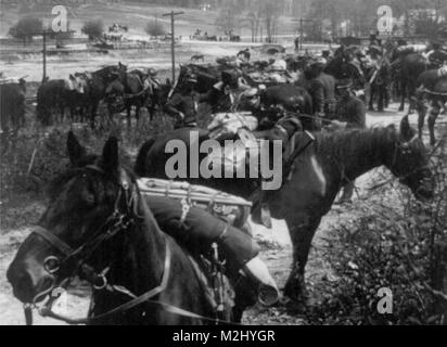 Buffalo Soldiers, 10th Cavalry Regiment, 1898 - Stock Image
