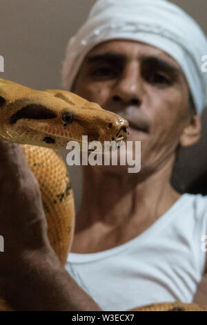 Karmei Yosef, Israel. 15th July, 2019. Israeli snake handler, breeder and catcher RAFAEL YIFRACH, 52, handles a Boa Constrictor in his home in Karmei Yosef. Yifrach has been intrigued by snakes since he was seven years old, he's been bitten by venomous snakes 18 times and currently grows and breeds some 300 non venomous snakes. World Snake Day is celebrated 16th July contributing to the cause of conservation of a sometimes dangerous but mostly misrepresented reptile. Credit: Nir Alon/Alamy Live News. - Stock Image