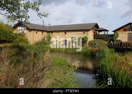 The London Wetlands Centre at Barnes UK Photograph taken by Simon Dack - Stock Image