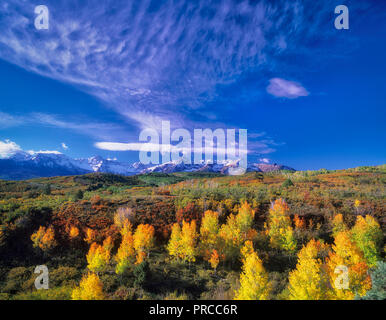 High clouds with fall colored aspens. San Juan Mountains. Uncompahgre National Forest, Colorado - Stock Image