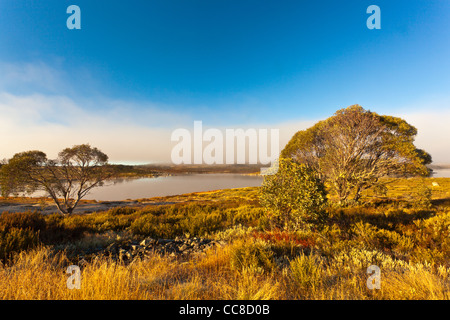 Early morning at Rocky Valley Reservoir near Falls Creek on the Bogong High Plains in Alpine National Park, Victoria, - Stock Image