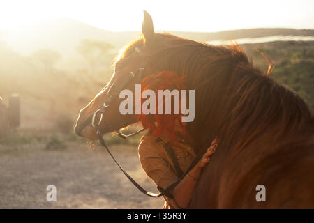 Love horse animal pet therapy red hair young pretty woman hug with affection her best friend - sunset sunlight in backlight - outdoor leisure activity - Stock Image