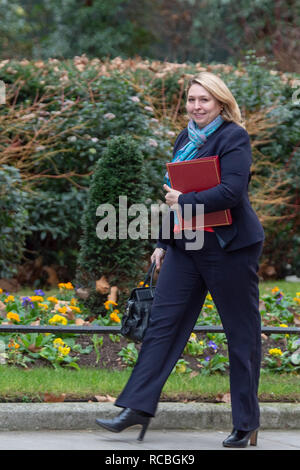 London, United Kingdom. 15 January 2019. Karen Bradley, Secretary of State for Northern Ireland, arrives at 10 Downing Street for the weekly cabinet meeting ahead of the critical Brexit vote. Credit: Peter Manning/Alamy Live News - Stock Image