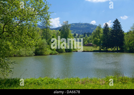 Pond, Bachtel, canton, ZH, Zurich, lake, lakes, Switzerland, Europe, pond - Stock Image