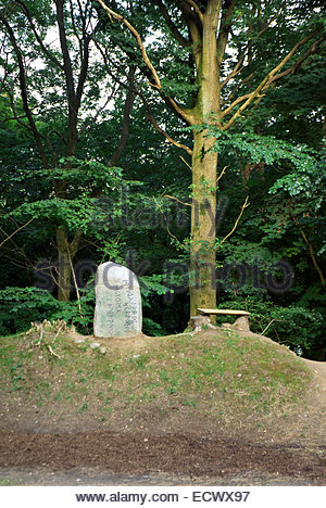 A rune stone near the Danevirke and the ancient Viking town of Haithabu in Schleswig-Holstein, Germany. - Stock Image