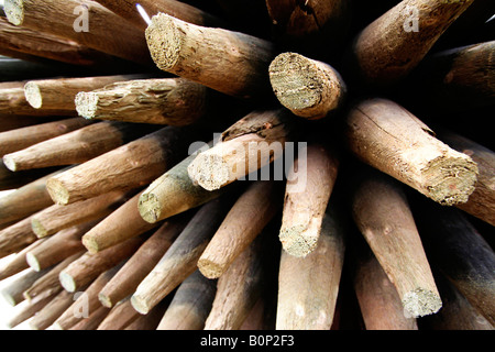 A semi wide angle shot of a stack of wooden posts. - Stock Image