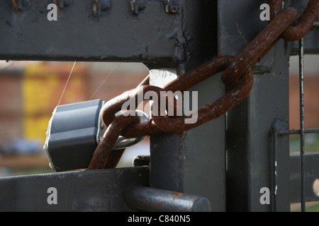 Padlock and chain - Stock Image