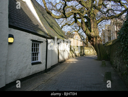 The Lamb and Flag Passage, Oxford City, Oxfordshire, UK - Stock Image