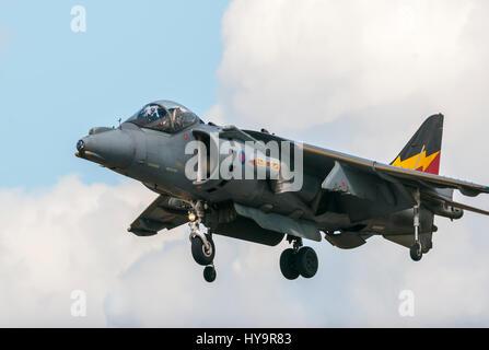 RAF Harrier ZG858 4SQN RIAT 2010 - Stock Image