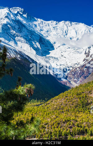 Landscapes Snow Mountains Nature Morning Viewpoint.Mountain Trekking Landscape Background. Nobody photo.Asia Vertial - Stock Image