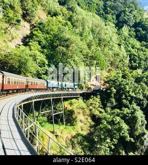 Rainforest railway - Stock Image