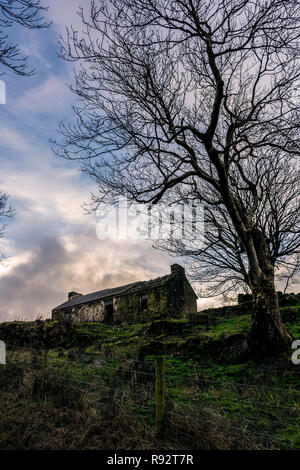 Ardara, County Donegal, Ireland. 19th December 2018. The sunset silhouettes winter trees and the ruins of an old farmhouse. Credit: Richard Wayman/Alamy Live News - Stock Image