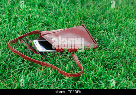 Cell phone in a leather parts on green grass - Stock Image