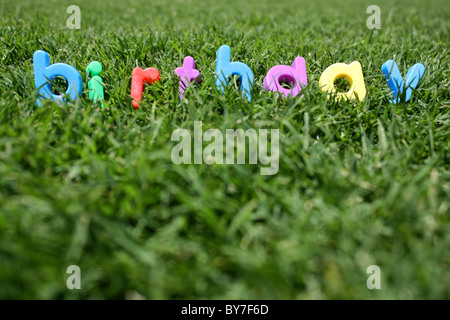The word 'birthday' spelled out in colourful plastic letters, on green grass, taken from a low angle - Stock Image