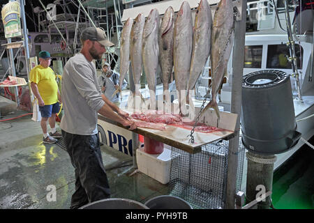 Commercial fisherman filleting the catch of the day at the Harbor Walk Marina where the Destin Florida fishing fleet tie up and sell their fresh fish. - Stock Image