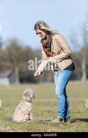 Young Woman Gives Her Dog A Reward A Tasty Treat - Stock Image