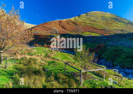 Dovedale valley, Lake District National Park, Cumbria, England, UK, Europe. - Stock Image