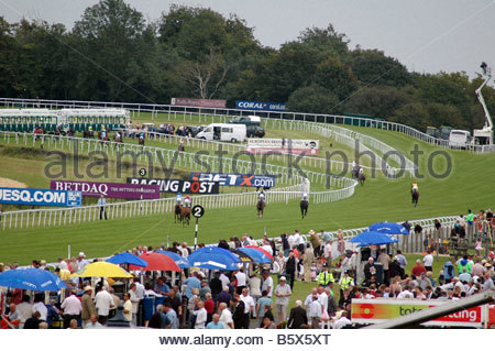 Competitors cantering down to the start Goodwood Racecourse - Stock Image