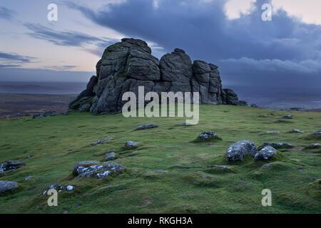 Haytor at dawn Dartmoor national park Devon Uk - Stock Image
