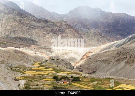 Nubra Valley, Ladakh, India - Stock Image