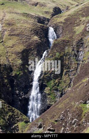 The Grey Mare's Tail or Roaring Linn waterfall, near Moffat, Dumfries & Galloway, Scotland, UK - Stock Image