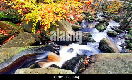 Padley Gorge, Grindleford, Peak District National Park, Derbyshire, UK. 5th October, 2017. UK Weather: Autumn leaves - Stock Image
