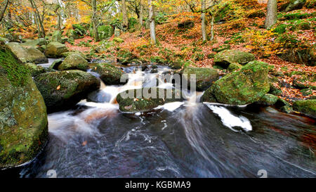Padley Gorge, Grindleford, Peak District National Park, Derbyshire, UK. 5th October, 2017. UK Weather: Autumn leaves - Stock Image