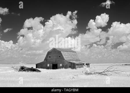 Old barn and clouds Oyen Alberta Canada - Stock Image