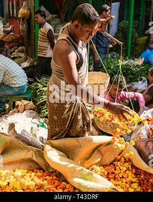 Vertical portrait of a worker at Mullik Ghat flower market in Kolkata aka Calcutta, India. - Stock Image