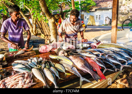 Galle, Sri Lanka - March 14th 2011:  Fish market on the beach. Fishermen sell their own catch here. - Stock Image