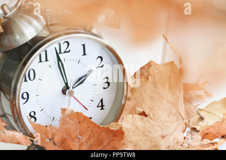 Alarm clock in fallen autumn leaves with shallow depth of field. Daylight savings time concept with clock hands at almost 2 am. - Stock Image