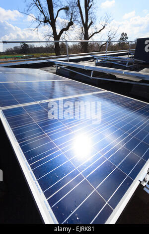 sun reflecting off photovoltaic cell  panels - Stock Image